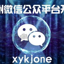 郑州微信公众平台开发公司