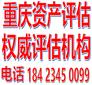九龍坡企業價值評估、股權資產評估、投資入股評估圖片