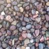 驻马店鹅卵石价格,鹅卵石滤料生产厂家,驻马店鹅卵石