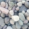 沧州鹅卵石价格,鹅卵石滤料生产厂家,沧州鹅卵石
