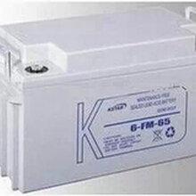 科士达ups电源蓄电池12v65ah