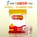 西和縣母豬沒奶用仔豬奶粉代替