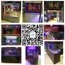 水族箱鱼缸、鱼药、观赏鱼饲料、滤材等水族周边产品,清缸维护欢迎资讯