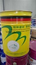 重庆隧道防水环氧树脂二衬防水涂料厂家图片