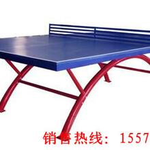 哪里有好的乒乓球台卖图片