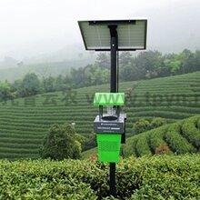 风吸式太阳能杀虫灯报价