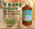 花生芽营养液增产就用益富源芽苗生态宝热线电话