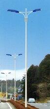 邯郸电厂路灯,邯郸热电厂路灯,邯郸焦化厂路灯,邯郸路灯安装图片