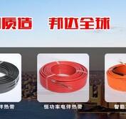 厂家促销CWH2-J-30恒功率山东地区防腐能力强电热带