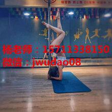 广安专业拉丁舞摩登舞瑜伽培训小班教学一对一