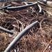 邯鄲廢銅回收包括廢舊電纜回收