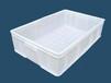 广元塑料食品箱食品桶批发