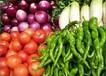 厚街蔬菜配送,食堂承包