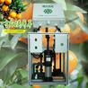 广西果树施肥机砂糖桔果园地管全自动灌溉智能水肥一体机