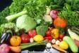 同安蔬菜配送食堂承包