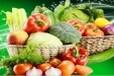 夏港街道蔬菜配送,食堂承包