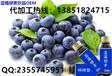 50ml植物饮料饮品oem研发生产厂