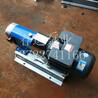 LQ3A型316L材质凸轮转子泵容积式胶体泵饮料泵巧克力浆泵