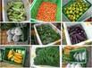 大岭山蔬菜配送,食堂承包