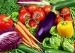 高埗蔬菜配送,食堂承包