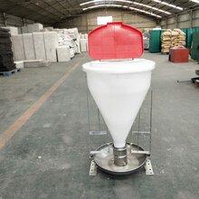30公斤干式自动下料器80公斤干湿采食槽