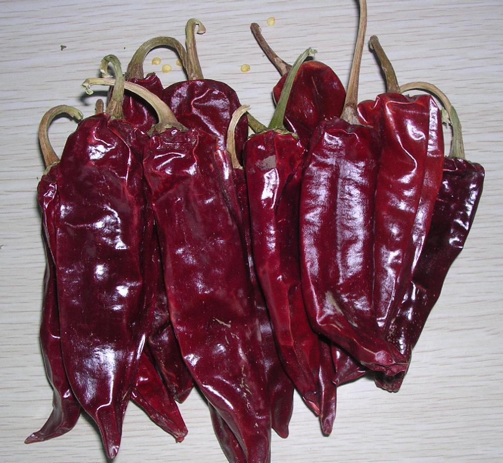 可克达拉出售干红辣椒厂家