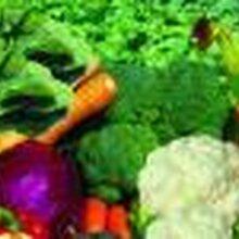 万江蔬菜配送,食堂承包图片