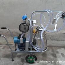 奶牛擠奶機單雙桶真空擠奶機瑞盛源小型不銹鋼擠奶機圖片