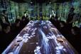長春3D全息舞蹈秀長春3D視頻制作長春樓體投影長春3D全息婚禮