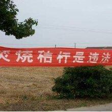 时事热点:农村秸秆焚烧,究竟犯什么法了?图片