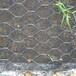 石笼网铅丝笼,石笼网箱,包塑石笼网,镀锌石笼网,雷诺护垫