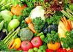 角美片区蔬菜配送,食堂承包
