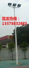 崇左/隆林篮球场路灯杆6米批发图片