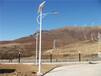 衡阳太阳能路灯6米一把在多少钱市电路灯参数配置可定制