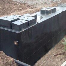 猪场猪粪水处理设备,地埋式污水处理设备