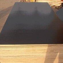 江苏海洋板多层免漆板厂家图片