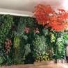 仿真植物墙定做