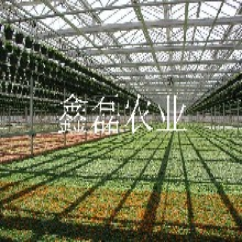 温室大棚厂图片