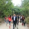 深圳大鹏哪里可以植树专接待公司学校植树节活动基地
