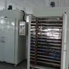 廠家非標定做恒溫干燥箱工業電烤箱