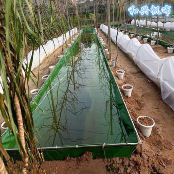 新突破龙虾帆布水池对虾水池养鱼帆布水池