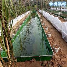 加厚耐用养泥鳅帆布水池刀刮布帆布水池厂家直销供应图片