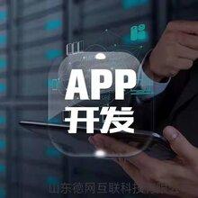 APP软件源码开发高端企业网站开发公众号小程序定制开发