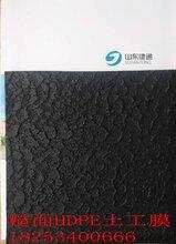 土工防渗膜,土工布、复合膜、膨润土防水毯图片