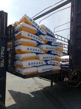 中博特犊牛奶粉促进小牛生长发育