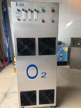 50L制氧机50L/MIN分子筛制氧机机身采用304不锈钢可按要求定制