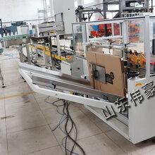 广东浓盐酸全自动装箱机化工原料码垛机生产企业报价
