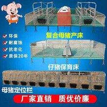 国家企业认证坚固防滑双体母猪产床双合体猪笼子种类齐全