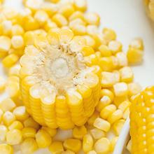 玉米鮮聲黑龍江五常糯玉米圖片