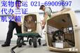 上海寵物托運價目表-上海寵物托運價格費用托運多少錢